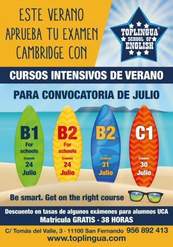Toplingua School intensivos verano